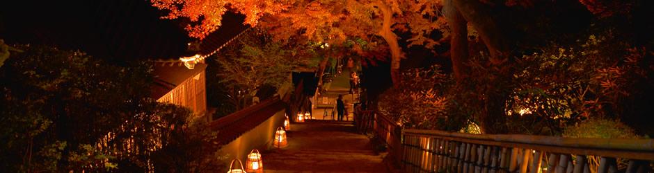 大興寺の夜のもみじ